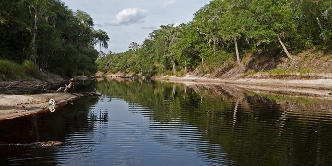 Suwanee River State Park