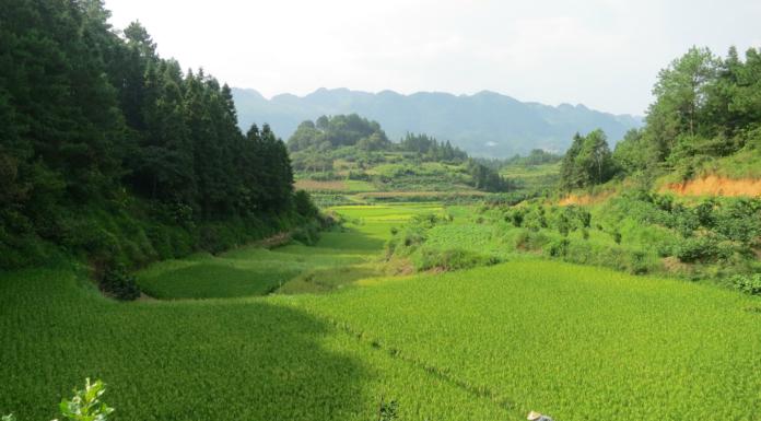 Libo County, el paraíso escénico del Sur de China