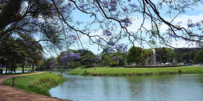 Parque-Ibirapuera