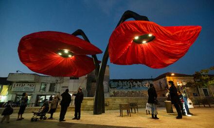 Las flores gigantes de Jerusalén