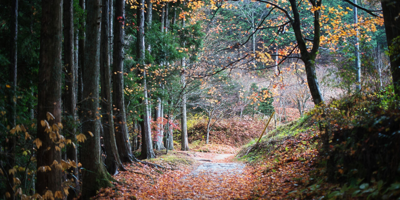 La legendaria ruta de Nakasendo en Japón