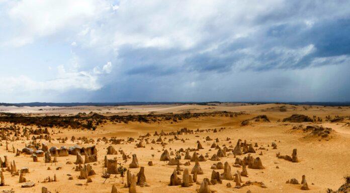 Desierto de los pináculos; una belleza escondida en Australia