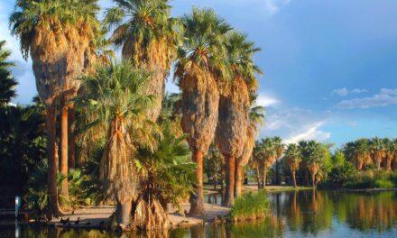 El secreto mejor guardado de Tucson, en Arizona
