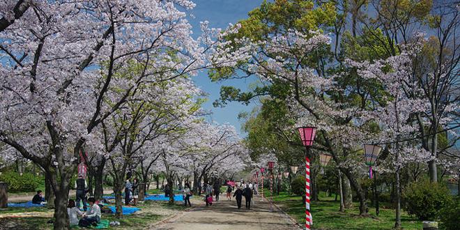 jardín Nishnomaru4