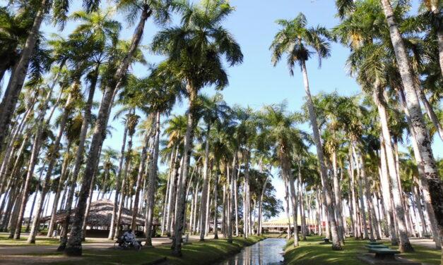 Paramaribo, una joya de Sudamérica