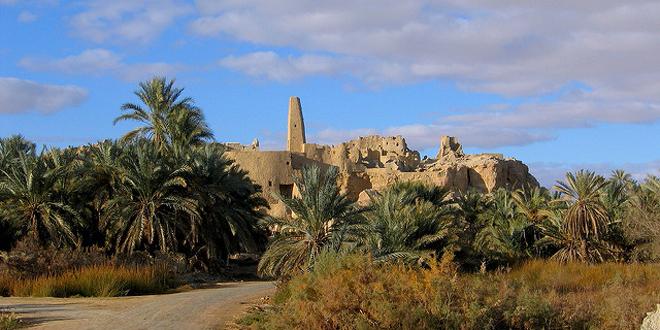 siwa egipto6