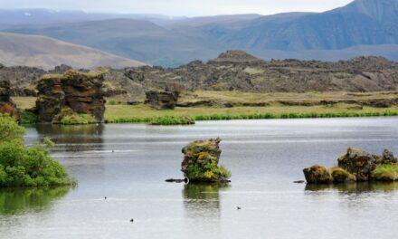 Lago Myvatn, el lago de las moscas enanas