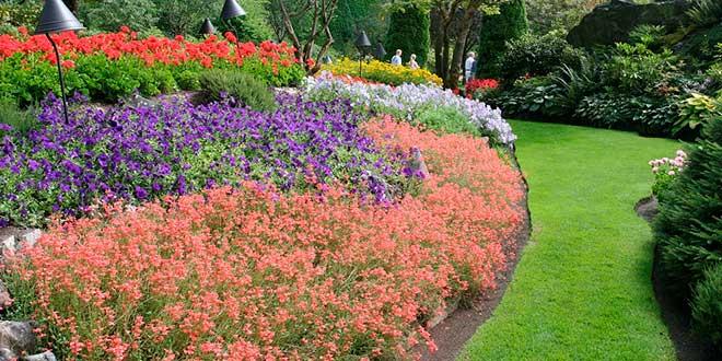 Los jardines de butchart sencillamente maravillosos el for Jardines butchart