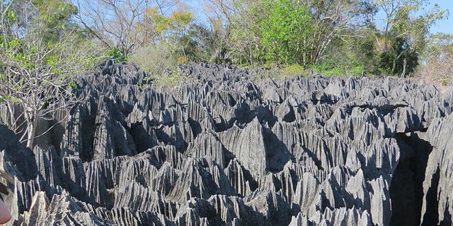 Tsingy de Bernaraha1