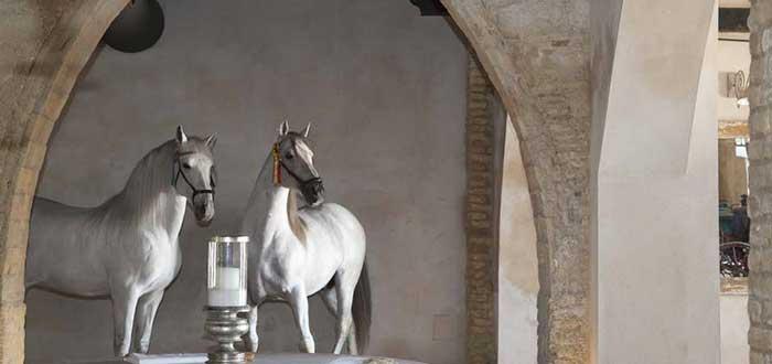 Una boda campestre en Jerez | España