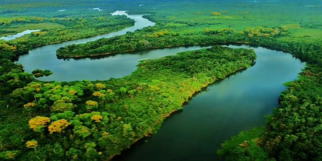 pantanal Brasil El Viajero Feliz