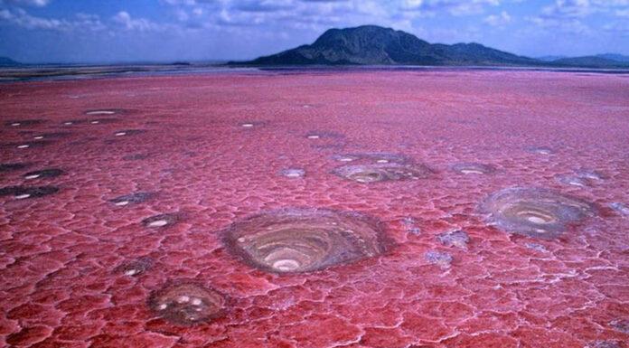 El lago de sangre de Natron, Tanzania