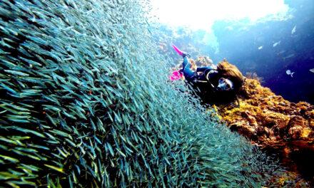 Las Islas Corales en Rosario, el paraíso en la tierra