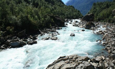 Parque Nacional Queulat, un paraíso chileno