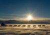 Ittoqqortoormiit, el pueblo más aislado de Groenlandia