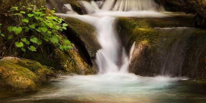 Limekiln-State-Park
