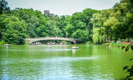 Consejos para visitar el Central Park