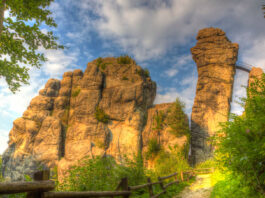 Bosque Tutónico y sus formaciones rocosas