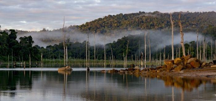 Parque Natural Brownsberg