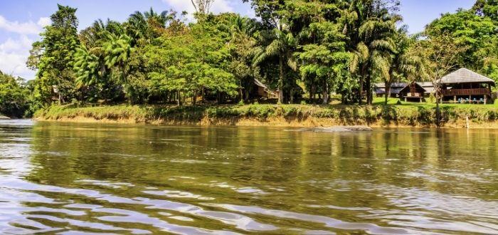 Reserva Natural de Surinam Central   Que ver en Surinam