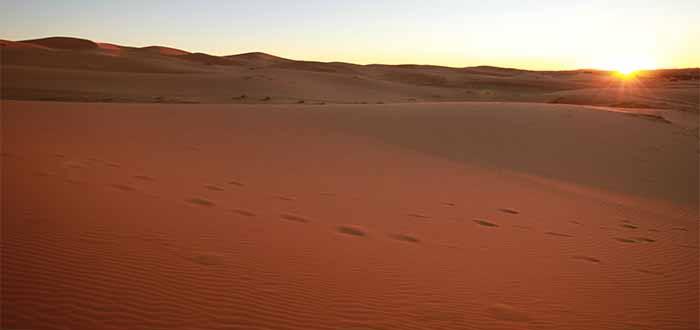 Amaneciendo en el desierto