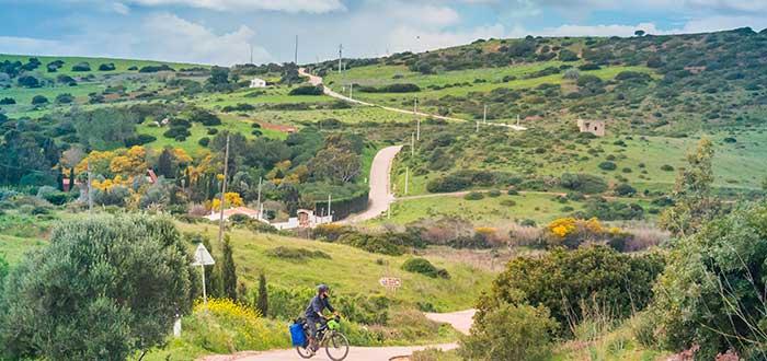 Naturaleza Algarve 3