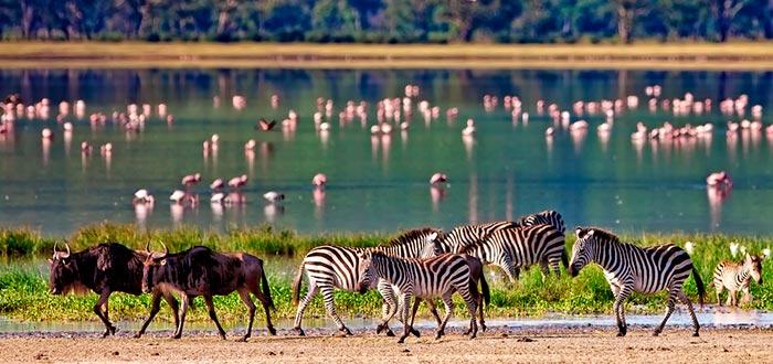 países africanos que visitar, Kenia
