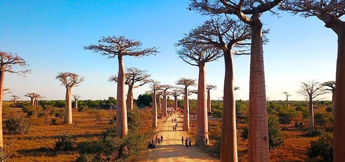 países africanos que visitar, Madagascar