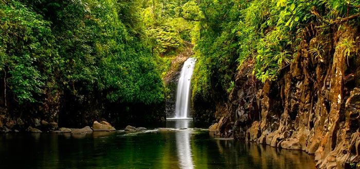 Visitar de Oceanía, Isla Taveuni, Fiyi