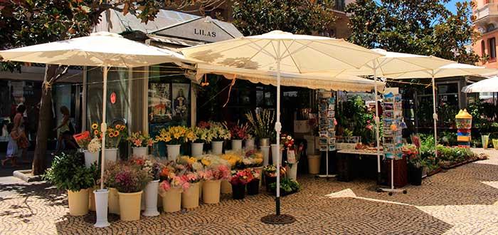 Qué ver en Cádiz 7 Plaza de las Flores