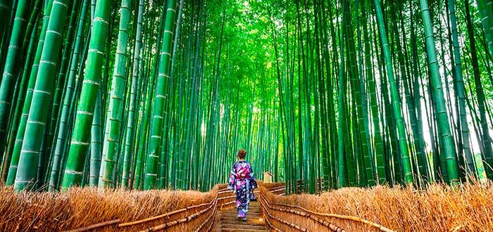 Qué ver en Kioto 4 Arashiyama