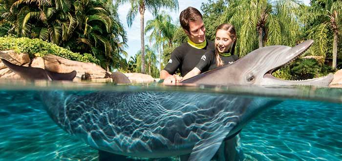 Qué ver en Orlando 10 Discovery Cove