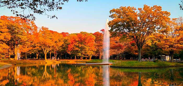 Qué ver en Tokio 4 Yoyogi Park