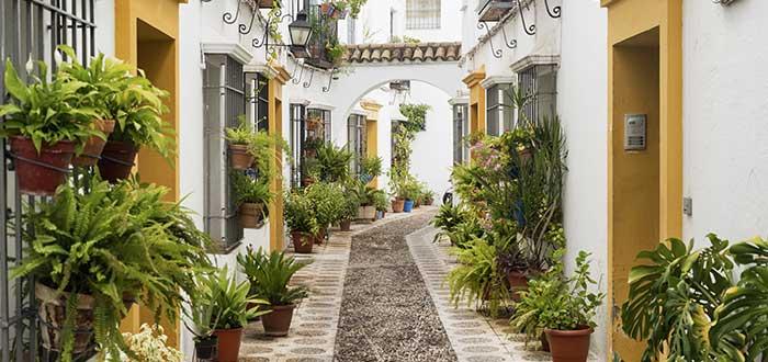 Que ver en Cordoba, Barrio de la Juderia