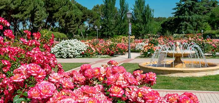 Parques y jardines de Madrid 4