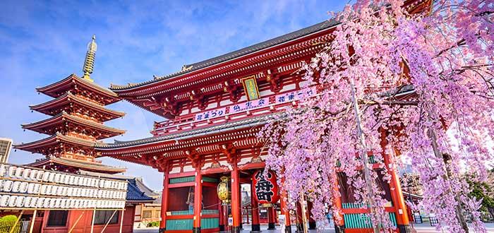 Qué ver en Japón | Templo Senso-Ji