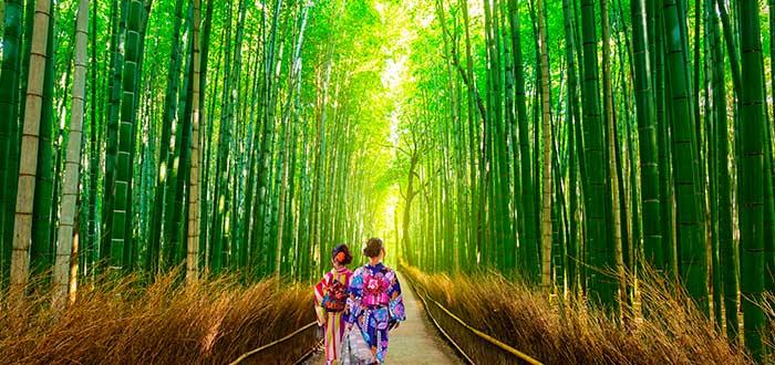 Qué ver en Japón 3 Arashiyama