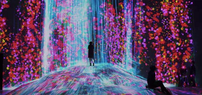 Qué ver en Japón | Museo de Arte Digital Odaiba