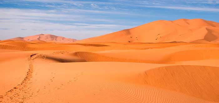 Vivir el desierto