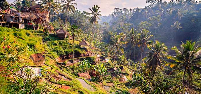 Qué ver en Bali 1