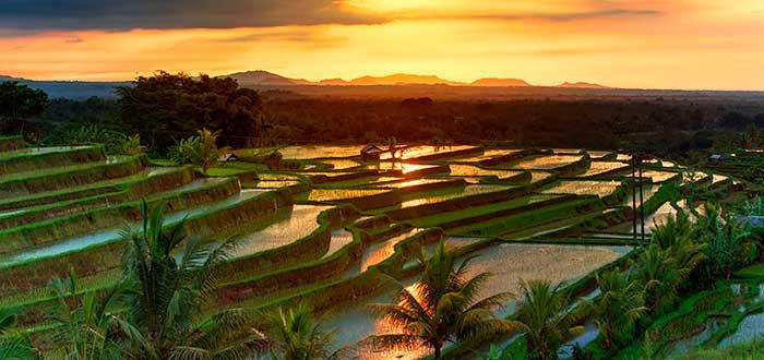 Qué ver en Bali 4