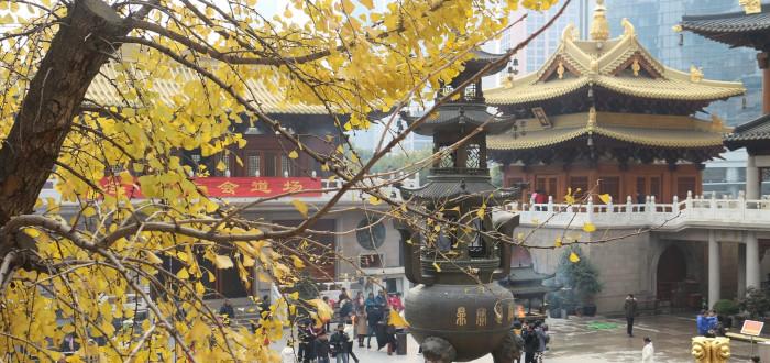 Qué ver en Shanghai templo