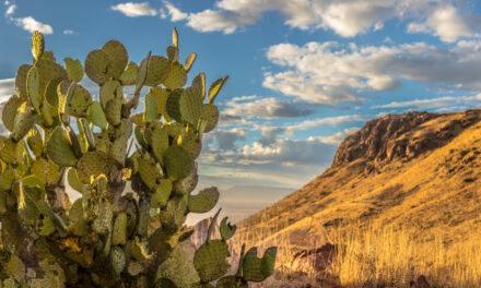 Qué ver en Chihuahua | 10 Lugares imprescindibles