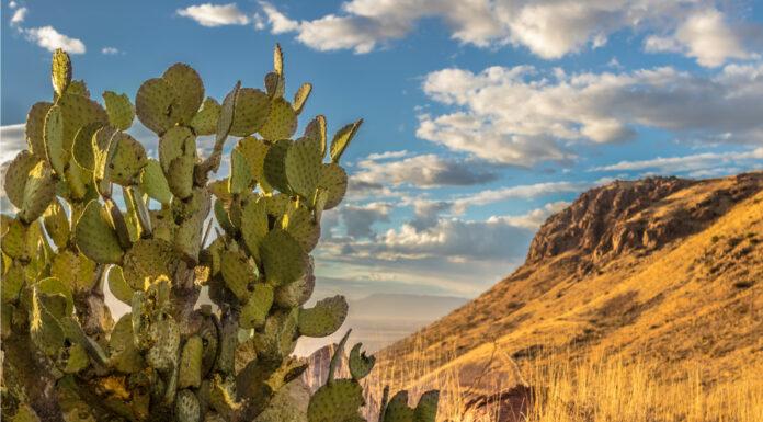 qué ver en Chihuahua