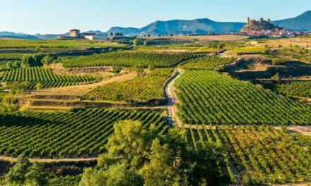 Qué ver en La Rioja | 10 Lugares Imprescindibles