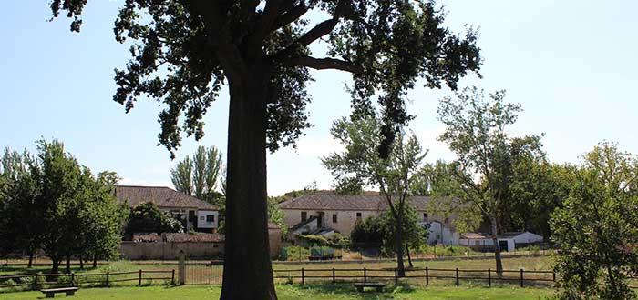 Que ver en Tudela | Bocal de Fontellas