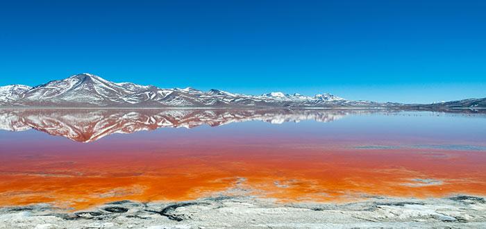 Qué ver en Bolivia. Laguna Colorada