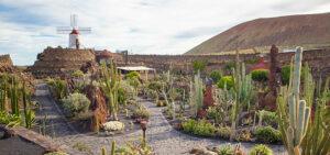 Qué ver en Canarias | Jardín de Cactus de Lanzarote