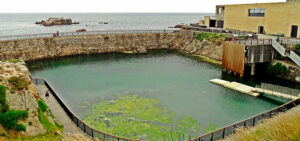 Qué ver en Galicia | Aquarium Finisterrae