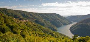 Qué ver en Galicia | Cañón del Sil